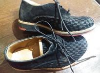 فروش کفش بچگانه مجلسی پسرانه در شیپور-عکس کوچک