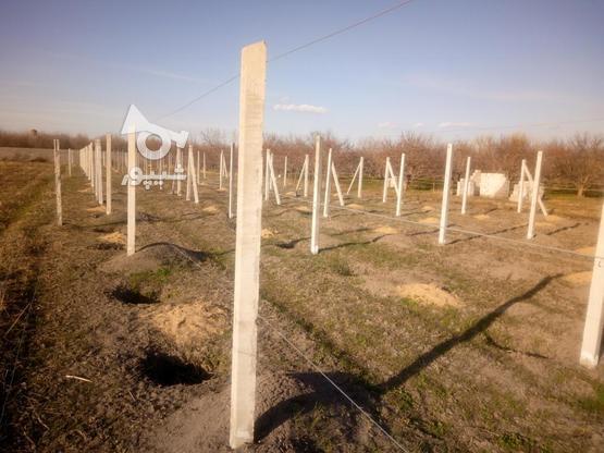 3360متر الوان روستای مقدم در گروه خرید و فروش املاک در آذربایجان غربی در شیپور-عکس2