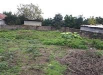 فروش زمین مسکونی 300 متر در تنکابن در شیپور-عکس کوچک