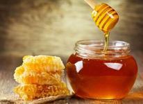 عسل طبیعی سبلان  در شیپور-عکس کوچک