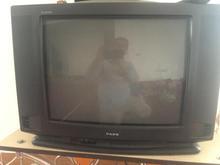 تلویزیون پارس  در شیپور