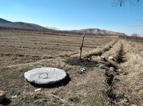8000 متر زمین کشاورزی آبی در شیپور-عکس کوچک