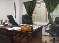 همکار اداری /منشی خانم مجرد در شیپور-عکس کوچک