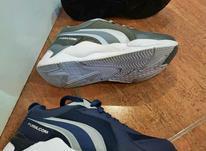 کفش اسپرت لژدار  در شیپور-عکس کوچک