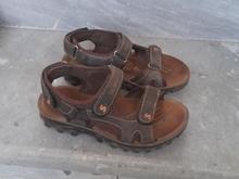 کفش تابستانی پسرانه  در شیپور