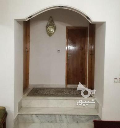 ویلا باغ 420 متر قائم شهر ساروکلا در گروه خرید و فروش املاک در مازندران در شیپور-عکس5