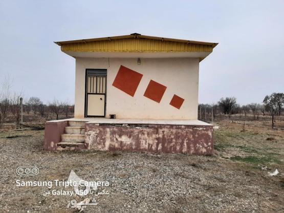 فروش 2جریب باغ در یک قواره پشت بحر بیگیر در گروه خرید و فروش املاک در زنجان در شیپور-عکس1