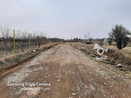 فروش 2جریب باغ در یک قواره پشت بحر بیگیر در گروه خرید و فروش املاک در زنجان در شیپور-عکس8