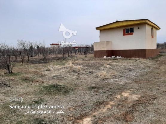 فروش 2جریب باغ در یک قواره پشت بحر بیگیر در گروه خرید و فروش املاک در زنجان در شیپور-عکس7