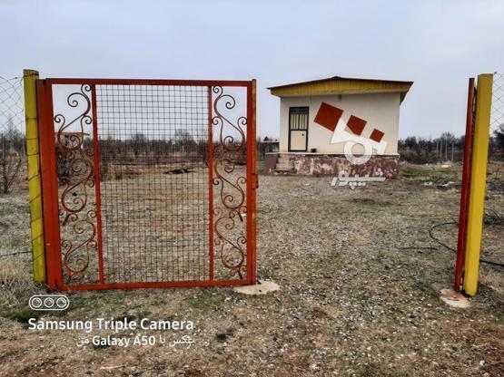 فروش 2جریب باغ در یک قواره پشت بحر بیگیر در گروه خرید و فروش املاک در زنجان در شیپور-عکس3