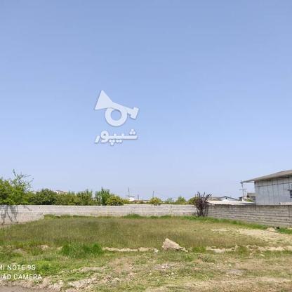 فروش زمین مسکونی 500 متر در بابلسر در گروه خرید و فروش املاک در مازندران در شیپور-عکس1