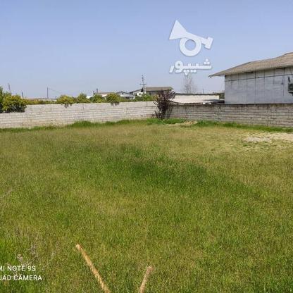 فروش زمین مسکونی 500 متر در بابلسر در گروه خرید و فروش املاک در مازندران در شیپور-عکس3