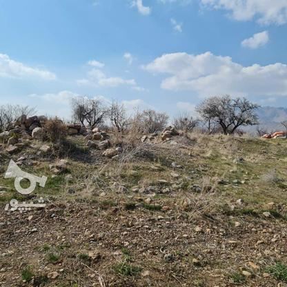 فروش زمین 450 متر در دماوند در گروه خرید و فروش املاک در تهران در شیپور-عکس4