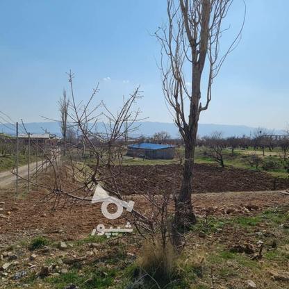فروش زمین 450 متر در دماوند در گروه خرید و فروش املاک در تهران در شیپور-عکس1
