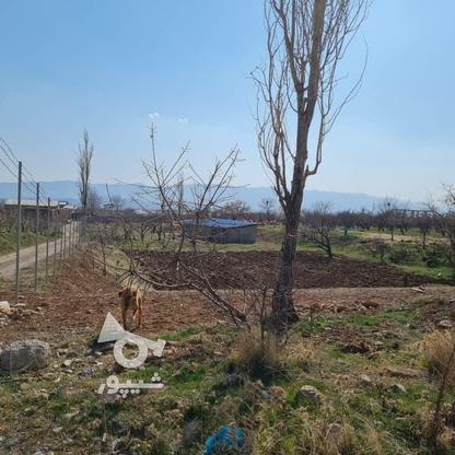 فروش زمین 450 متر در دماوند در گروه خرید و فروش املاک در تهران در شیپور-عکس2
