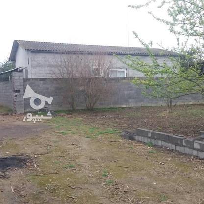 فروش باغ مسکونی 418 متر دربهنمیر در گروه خرید و فروش املاک در مازندران در شیپور-عکس3
