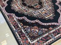 فرش خانه رویایی گرشاسب در شیپور-عکس کوچک