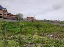 زمین داخل بافت مسکونی 247 متر در چالوس در شیپور-عکس کوچک