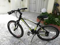 دوچرخه ویوا مدل HAMER  در شیپور