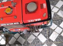 تیلر کوبیتا در شیپور-عکس کوچک