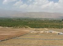 فروش زمین 646 متر در دماوند در شیپور-عکس کوچک