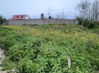 فروش زمین مسکونی 600 متر در صومعه سرا در شیپور-عکس کوچک
