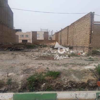 فروش بهتربن زمین در شهرک ستاره 200متری در گروه خرید و فروش املاک در زنجان در شیپور-عکس3