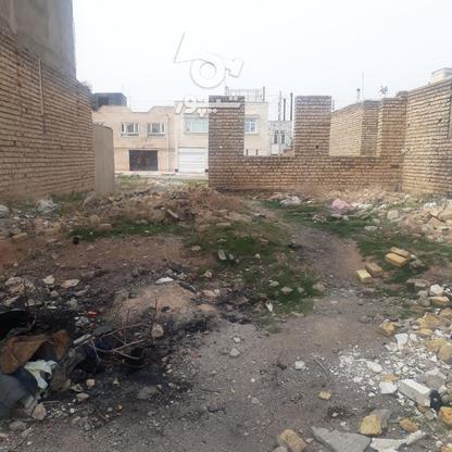 فروش بهتربن زمین در شهرک ستاره 200متری در گروه خرید و فروش املاک در زنجان در شیپور-عکس4