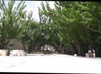 باغ ویلا 625 متری در بهاران در شیپور-عکس کوچک