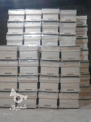 فروش کندو بدون طبق در گروه خرید و فروش صنعتی، اداری و تجاری در همدان در شیپور-عکس4