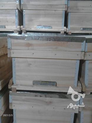 فروش کندو بدون طبق در گروه خرید و فروش صنعتی، اداری و تجاری در همدان در شیپور-عکس5