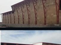 کارخانه سوله بستهبندی خرما و سردخانه در شیپور-عکس کوچک