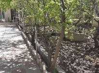 فروش باغ ویلا 400 متر در شهریار در شیپور-عکس کوچک