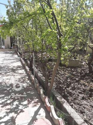 فروش باغ ویلا 400 متر در شهریار در گروه خرید و فروش املاک در تهران در شیپور-عکس1
