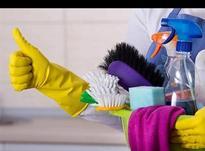 شرکت نظافتی بهپاک در شیپور-عکس کوچک