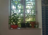 یکهزار وسیصدو پنجاه متر باغ و باغچه در گنج آباد در شیپور-عکس کوچک