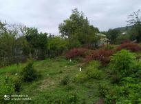 فروش زمین 600متر  در شیپور-عکس کوچک