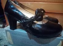 کفش وصندل شیک در شیپور-عکس کوچک