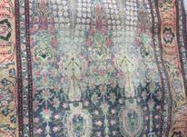 قالیچه دست بافت قدیمی در شیپور-عکس کوچک