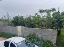فروش زمین مسکونی 320 متری در خ کفشگرکلاه در شیپور-عکس کوچک