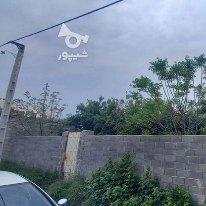 فروش زمین مسکونی 320 متری در خ کفشگرکلاه در گروه خرید و فروش املاک در مازندران در شیپور-عکس2