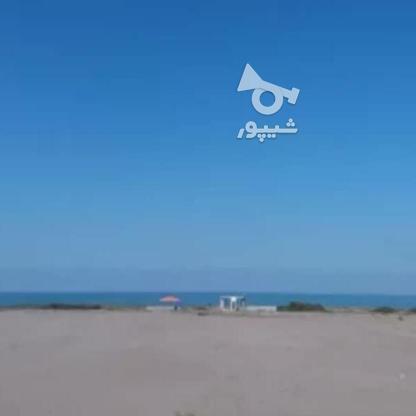 فروش یک قطعه زمین ساحلی شهرکی  در گروه خرید و فروش املاک در مازندران در شیپور-عکس2