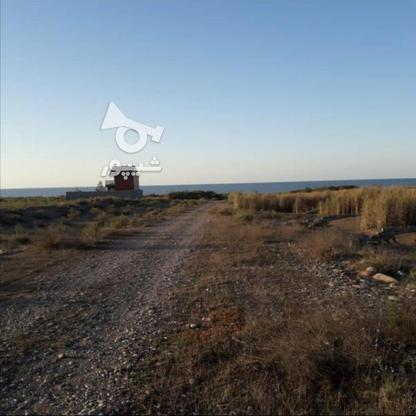 فروش یک قطعه زمین ساحلی شهرکی  در گروه خرید و فروش املاک در مازندران در شیپور-عکس1