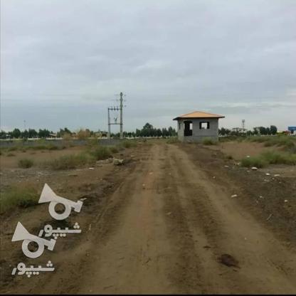 فروش یک قطعه زمین ساحلی شهرکی  در گروه خرید و فروش املاک در مازندران در شیپور-عکس3