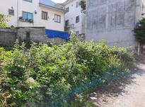 فروش زمین مسکونی 169 متر در لاهیجان در شیپور-عکس کوچک
