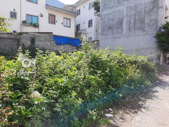 فروش زمین مسکونی 169 متر در لاهیجان در گروه خرید و فروش املاک در گیلان در شیپور-عکس1