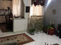 60 متر بازسازی شده در پونک در شیپور-عکس کوچک