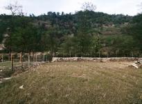 زمین کشاورزی 1,400 متری لفور روستا ده کلا در شیپور-عکس کوچک
