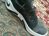 کفش نایک وارداتی امریکایی در شیپور-عکس کوچک