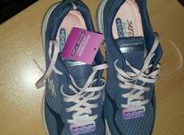 کفش اسکیچرز سایز 37.5 اصل  در شیپور-عکس کوچک